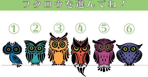 【心理テスト】フクロウの眼光で、あなたの性格の「チャレンジ精神度」を明らかに!