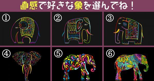 【心理テスト】惹かれた象で、あなたの「ツンデレ比率」がわかります