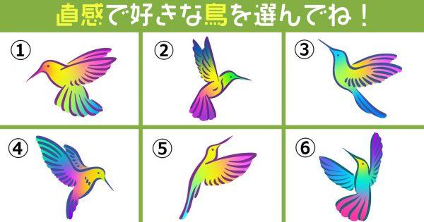 【心理テスト】虹色の鳥が運んでくる…あなたの「性格」