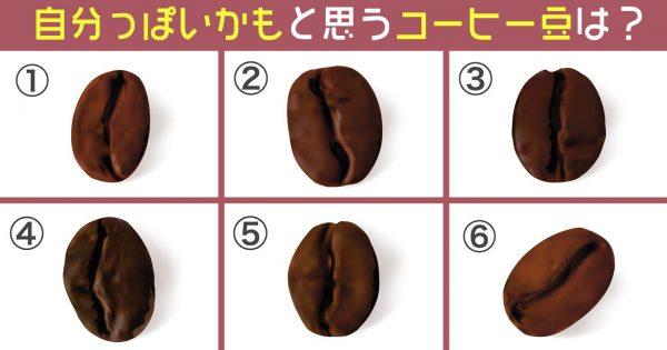 コーヒー豆 性格 心理テスト
