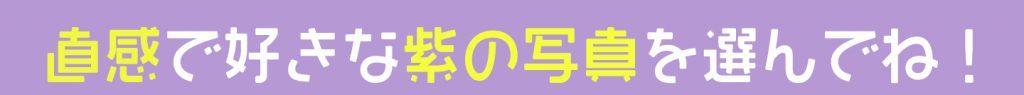 紫 尊敬 心理テスト