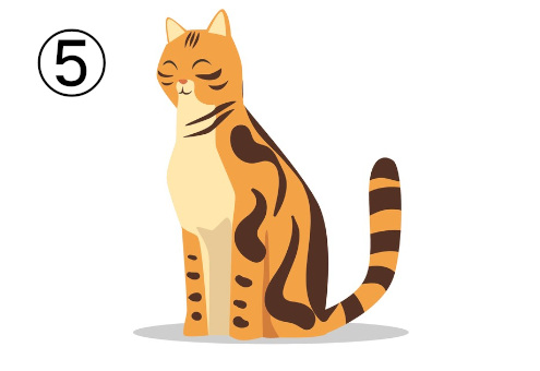 猫 天の邪鬼 心理テスト