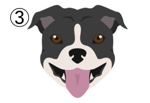 犬 発言 言葉 直球 マイルド 心理テスト