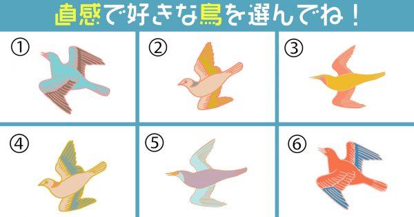 【心理テスト】鳥で診断!あなたの「伝達力レベル」がわかっちゃう⁈