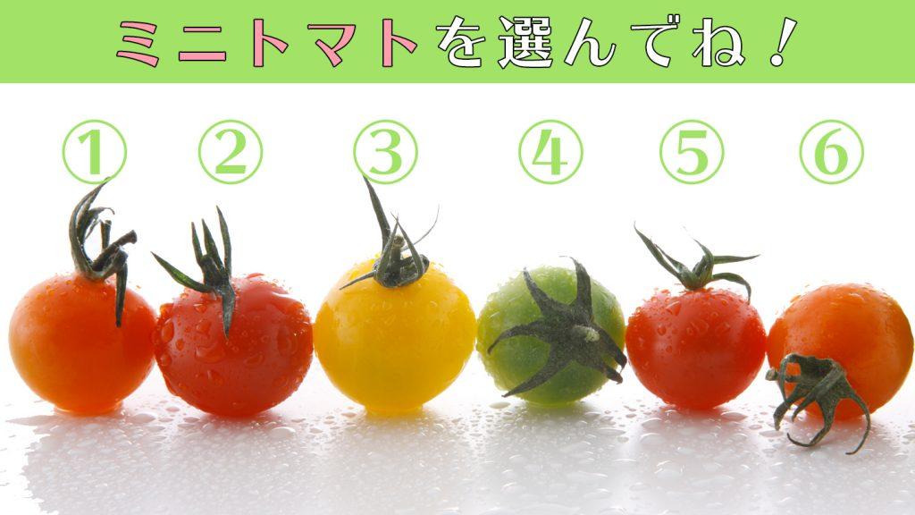 tomatoEYE