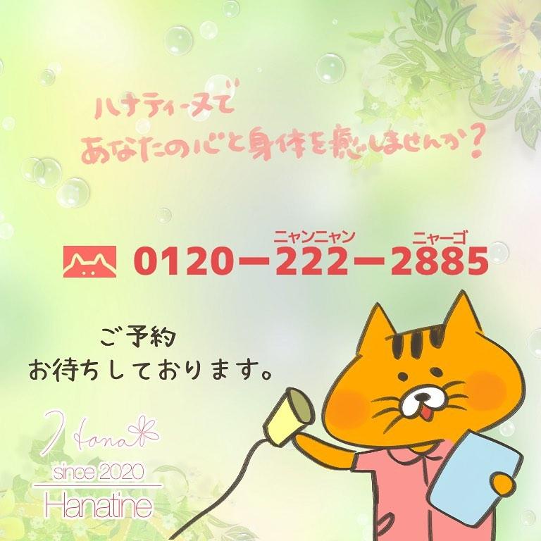 131853044_394805048261410_2185599543799316429_n