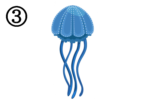 クラゲ 毒舌 心理テスト