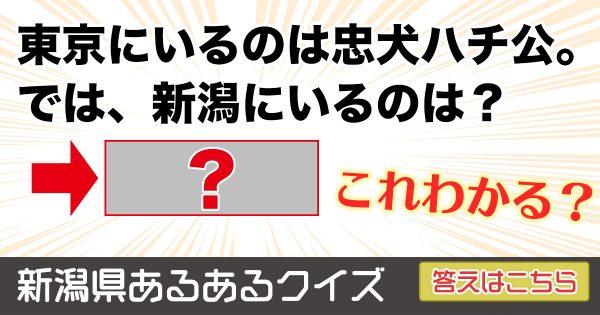 【新潟県あるあるクイズ】おまんは何問正解できるかな?