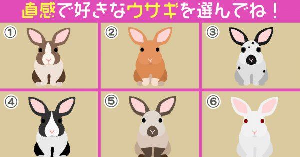 【心理テスト】好みなウサギでわかる!あなたは「鈍感な性格?敏感な性格?」