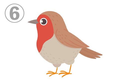 6bird
