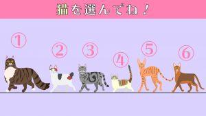 【心理テスト】選んだ猫のイラストであなたの「社交性」がわかる!