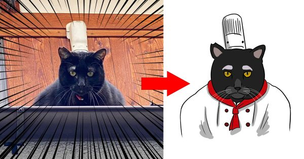 【8万いいね獲得】黒ネコの「コックさん」がキュート過ぎるんです🥰