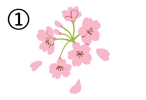 春 ワクワク 心理テスト 桜