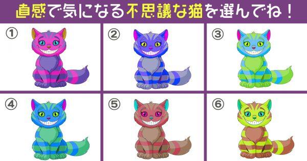 【心理テスト】不思議な猫が暴く!あなたの「ポーカーフェイス度」