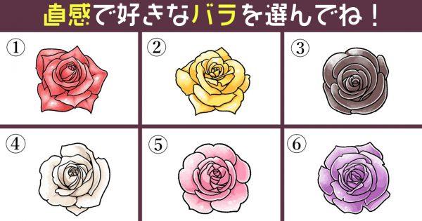 【心理テスト】あなたの性格の「一途さ」はどれくらい?好みなバラを選んでね