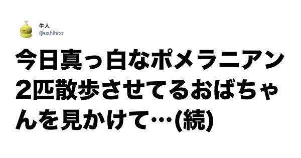 【癒し度MAX】偶然の出会いから生まれた「ほっこり話」 7選