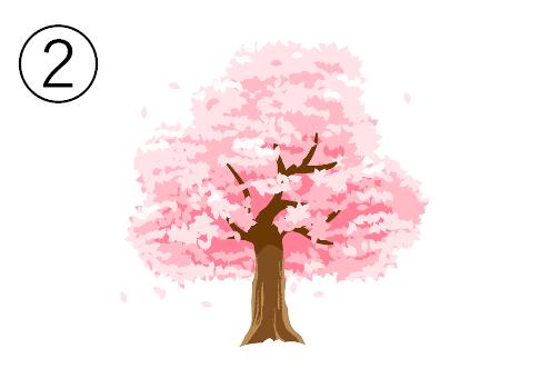 桜 木 春 潔さ 心理テスト
