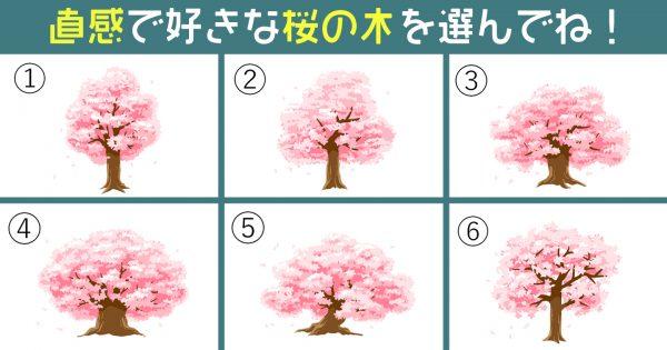 【心理テスト】桜の木が導き出す、あなたの「潔さ」は何%?