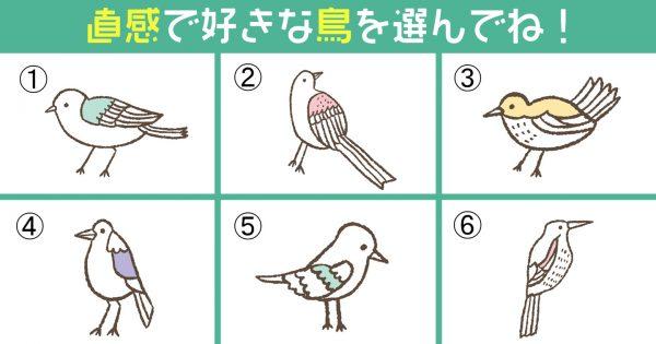 【心理テスト】鳥を選んで性格診断!あなたの「マイペース度」はどれくらい?