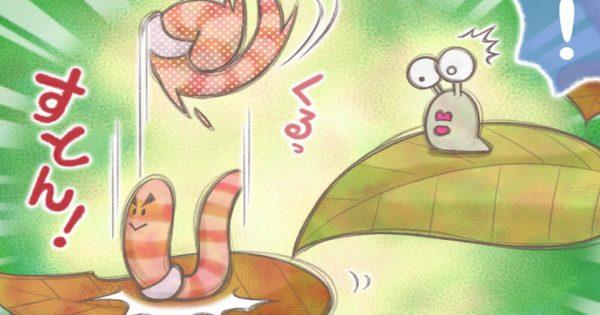 【グジ 第30話】秋のグジ