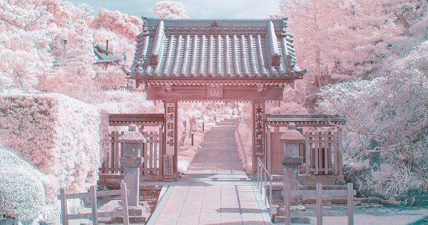 【21万いいね】ある方法で撮影された「鎌倉」が完全にファンタジーの世界!