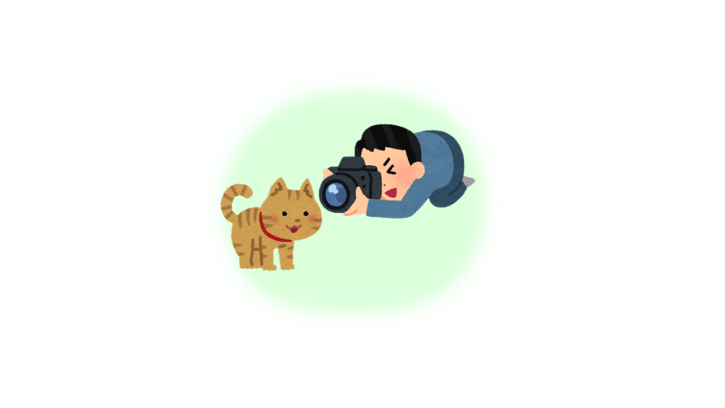 猫 にゃんこ 愛 心理テスト