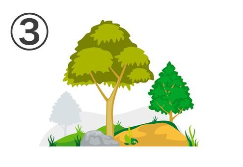 山 自然 山菜 性格 例える 心理テスト