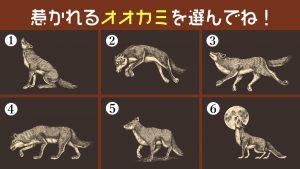 【心理テスト】6匹の狼が嗅ぎ当てる、今のあなたの「不安の大きさ」