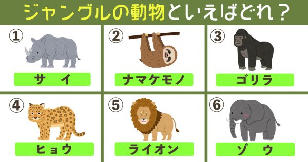 【心理テスト】選んだ動物が象徴する、あなたの「隠れた才能」