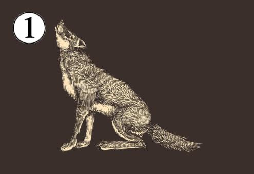オオカミ 不安 心理テスト
