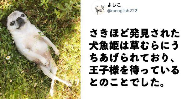 かわいすぎる謎生物「犬魚姫」の姿に20万人がメロメロ♥