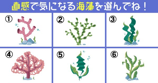 海藻 心 天気 心理テスト