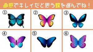 【心理テスト】惹かれる蝶を選べばわかる!あなたの「一匹狼傾向の強さ」