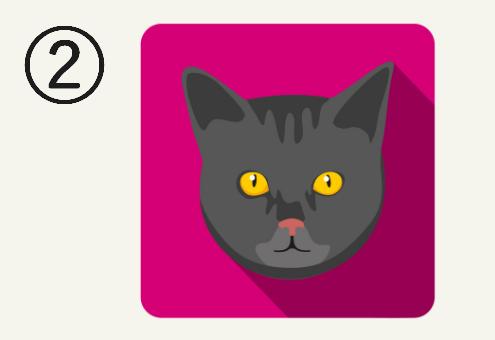 ショッキングピンクの背景に、オレンジの目をした黒猫