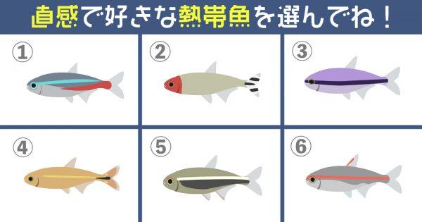 【心理テスト】あなたの「性格傾向」を解明!飼いたい熱帯魚を選んでね♪