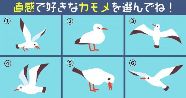 【心理テスト】選んだカモメが教えてくれる、あなたの「性格を表す3要素」