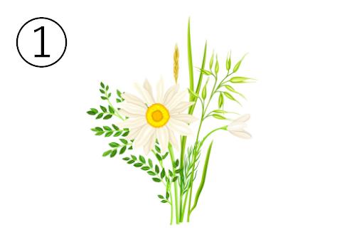 デイジーのような花束