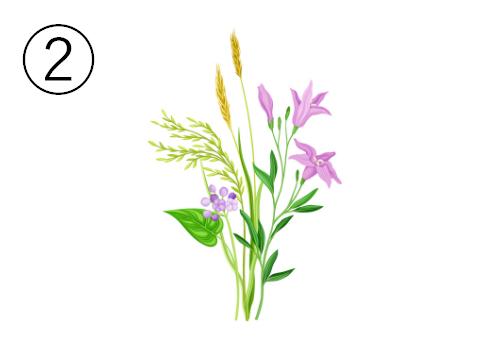紫と黄色の細かい草花