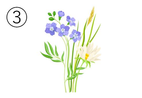 スミレのような花と、白い花の蕾
