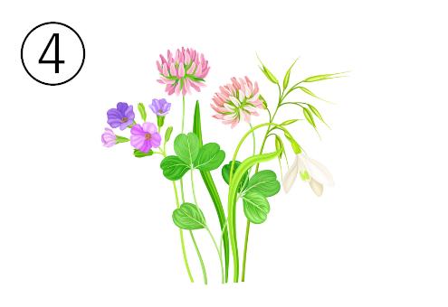 シロツメクサが中心の花束