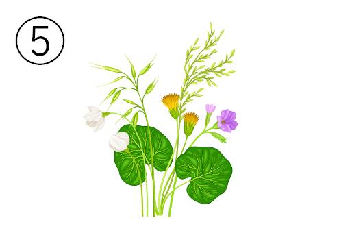 3種の蕾が集まった花束