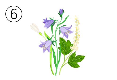桔梗のような紫の花束