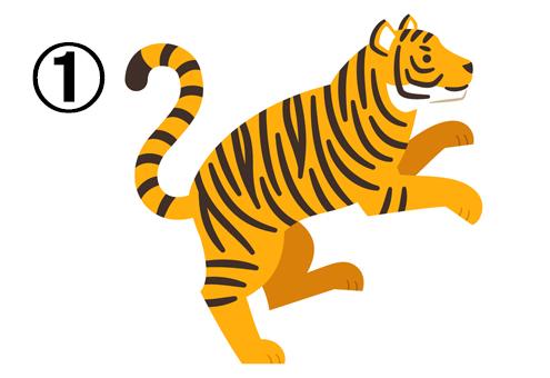 右向きに二本足で立つトラ