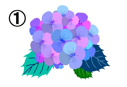 ピンク、水色、紫等の花に、ネイビー、緑、ターコイズの葉の紫陽花