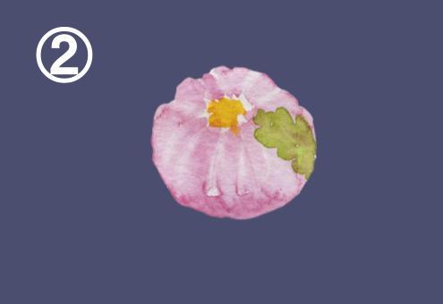 桃の花の練りきり