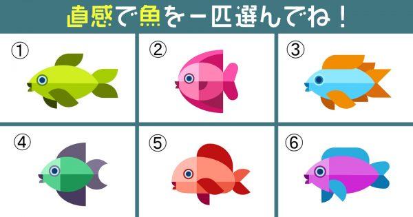 【心理テスト】あなたの「リアクション」は大きめ?選んだ熱帯魚が教えてくれます!