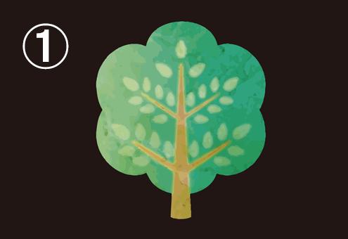 ふわふわと広がった、新緑の広葉樹