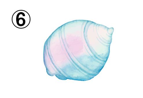 丸い、水色とピンクのグラデーションの貝殻