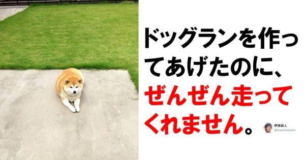 ペット「暇だし、飼い主の予想ぜんぶ裏切るやつやるか…」7選