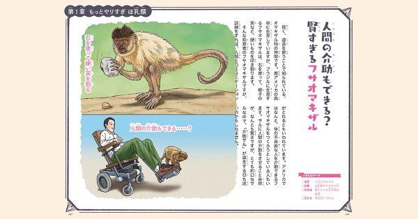 【もっとやりすぎ いきもの図鑑 第7話】人間の介助もできる?「フサオマキザル」